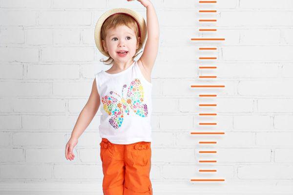 برنامه روزانه کودک دو ساله