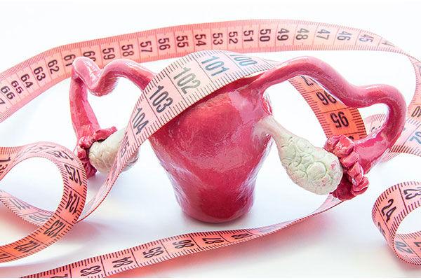 اندازه تخمدان برای بارداری