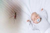 پشه گزیدگی در نوزادان